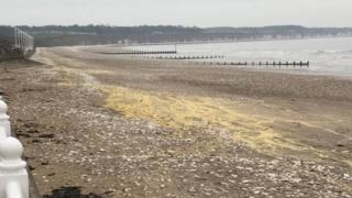 wax on the beach near Bridlington