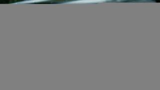 Woody Johnson with Donald and Melania Trump