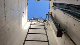 A view out of the bunker, with the steel ladder