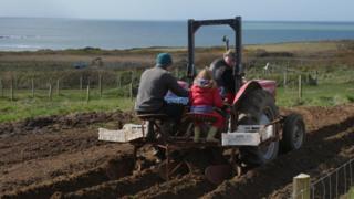 ar y tractor