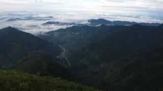 नेपाल वन