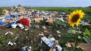 Wreckage of Malaysia Airlines flight MH17 two days after it crashed in a sunflower field near the village of Rassipnoe, in rebel-held east Ukraine (19 July 2014)