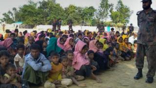 缅甸政府军看管罗兴亚人