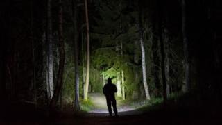 Силуэт человека на фоне леса