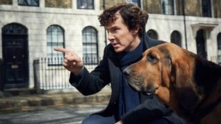 Бенедикт Камбербэтч и собака на съемках сериала