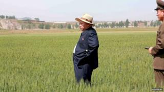 North Korean leader Kim Jong-un visited a farm in Pyongyang on 1 June 2015.