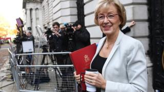 Leader of the Commons Andrea Leadsom