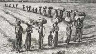 Harvest in the cotton fields in Georgia, United States of America, drawing by Edouard Riou (1833-1900)
