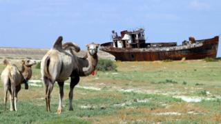 Всемирный банк выделил миллионы на спасение остатков усохшего Аральского моря