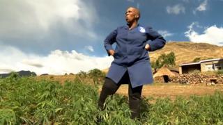 Mampho Thulo in her marijuana field in Lesotho