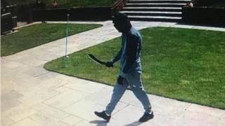 Machete-wielding burglar