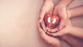 Manos representando la donación de riñón.