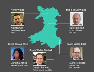 UKIP candidates graphic