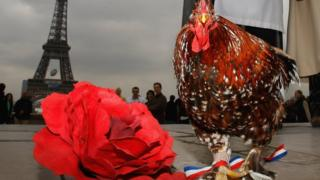 Shows Balthazar the cockerel, French football mascot, in front of Eiffel Tower in 2007.