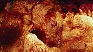 พบร่องรอยภาพพิมพ์รูปมือของนีแอนเดอร์ทัล ที่ถ้ำ Maltravieso ทางตะวันตกของสเปน