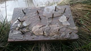 Stinger-style trap found in puddle