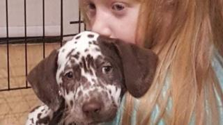 'Heartbroken' girl wants stolen therapy dog back for Christmas
