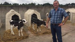 Brexit: Northern Ireland farmers warn of no deal risks