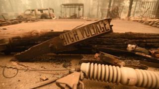 Geçen yıl bölgede 86 kişinin hayatını kaybettiği yangın, kopan elektrik hatları nedeniyle çıkmıştı.