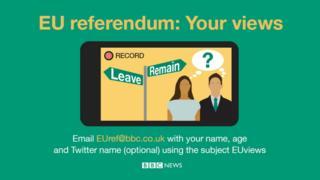 BBC EU referendum image