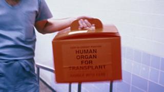 A box carrying a transplant organ