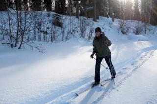 Romey caminando en la nieve