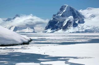 Alone - taken by Joyce Ferder Rankin in December 2013 near Vernadsky research base, Antarctica