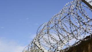 Barbed wire on prison fence