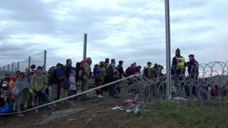Migrants enter Hungary in October 2016, at the height of the migrant crisis