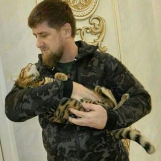 Kadyrov holding cat