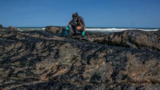 A volunteer cleans oil from rocks at the Pedra do Sal beach, in Salvador