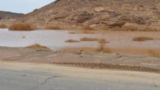 تجمع لمياه السيول