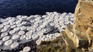 Ice pancakes on Thurso River
