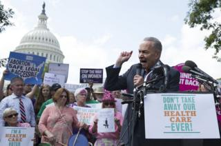 Chuck Schumer with protesters in Washington