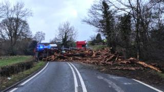 The overturned timber lorry