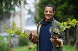 An Ethiopian man poses holding saplings.
