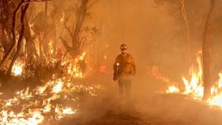 Firefighter Daniel Knox stands amid flames and fire in NSW