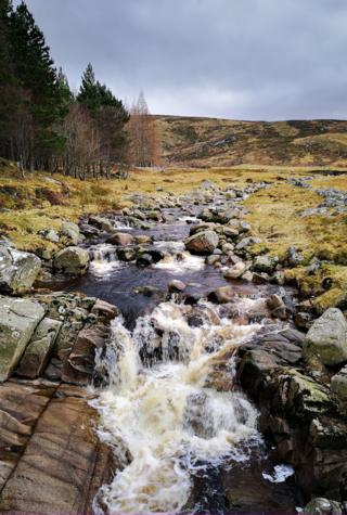 Spittal of Glen Muick stream