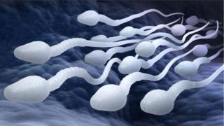 Male birth control pills