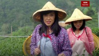 BBC旅游节目