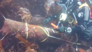 Diver at wreck site