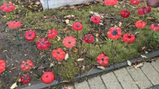 An image of a poppy display