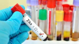 Amostra com vírus Zika
