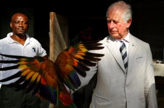 Prince Charles, Prince of Wales holds a Saint Vincent parrot during his visit to the Botanical Gardens during a visit to St. Vincent and the Grenadines on March 20, 2019 in Kingstown, St. Vincent and the Grenadines.