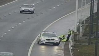 Police removed the swan from the M74