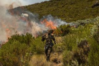 A soldier from the Kenyan army fights a fire on 1 March 2019 in Mount Kenya national park.