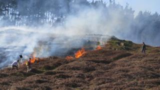 Bradgate Park fire
