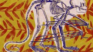 Ilustração de macaco do futuro com esqueleto à mostra
