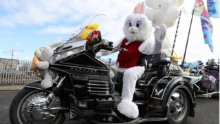 Bunny on bike