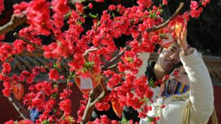 A Chinese couple with a peach blossom tree